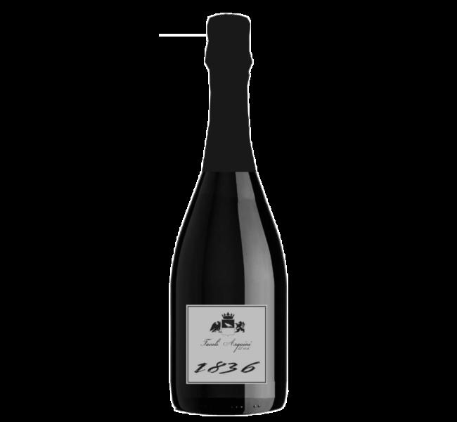 vini-azienda-agricola-tacoli-asquini-bicinicco-udine-trieste-1836